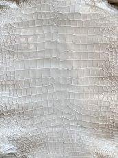 画像2: スモールクロコダイル ホワイト 45 (2)