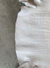 画像5: スモールクロコダイル ホワイト 45 (5)