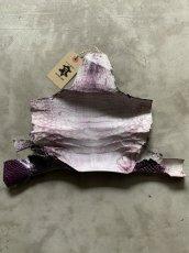 画像4: クロコダイル アゴ パープルメジパール (4)