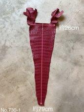 画像2: クロコダイル 尻尾 ボルドー (2)