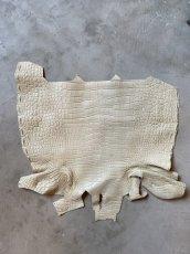 画像1: クロコダイル ハラ ホワイトベージュ (1)