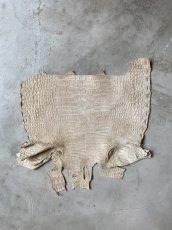 画像3: クロコダイル ハラ ホワイトベージュ (3)