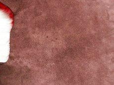 画像3: 牛 ヘアーカウ レッド×ブラウン (3)