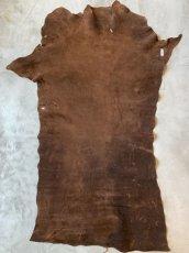 画像3: ヒポポタマス ブラウン (3)