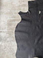 画像3: クードゥー ブラック (3)