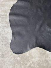 画像4: クードゥー ブラック (4)