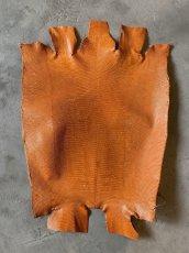 画像1: リザード オレンジ 29cm (1)