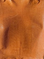 画像2: リザード オレンジ 29cm (2)