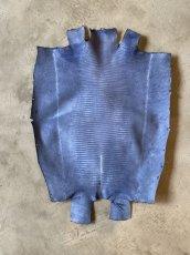 画像3: リザード ダークブルー  29cm (3)
