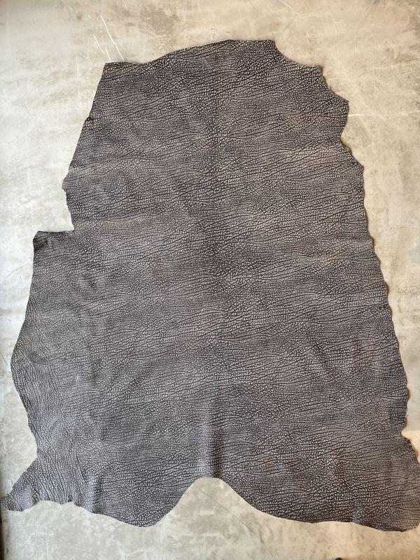 画像1: アンテロープ  (1)