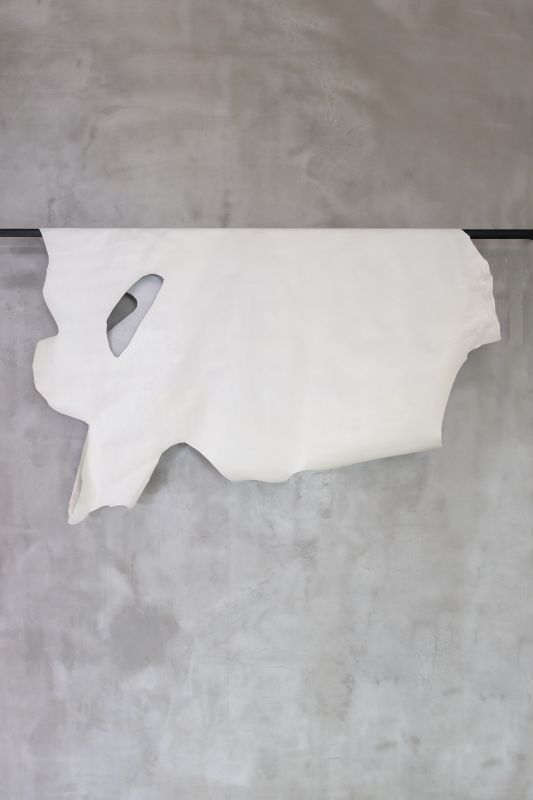 画像1: 牛 フラウ ホワイト (1)