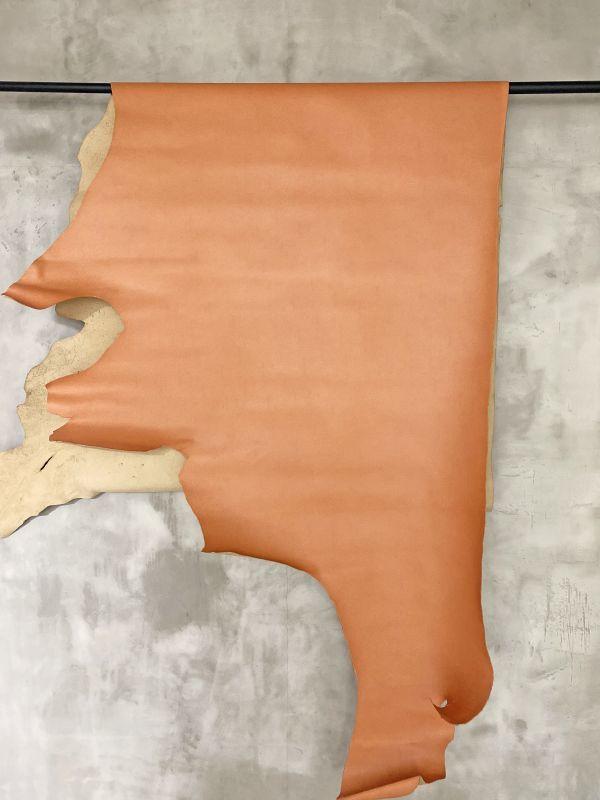 画像1: 牛 クシュベル オレンジ (1)