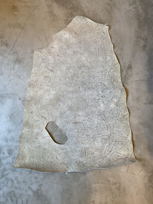 画像1: ヒポポタマス クラスト (1)