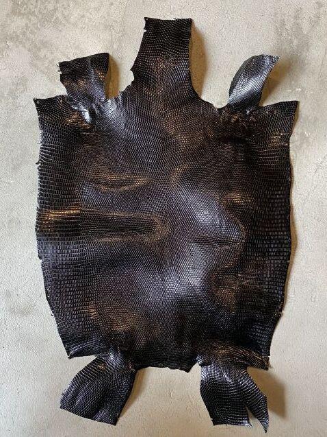 画像1: リザード ブラック 31cm (1)