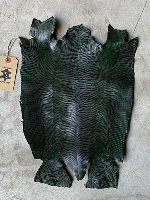 画像1: リザード キプロスグリーン 27cm (1)
