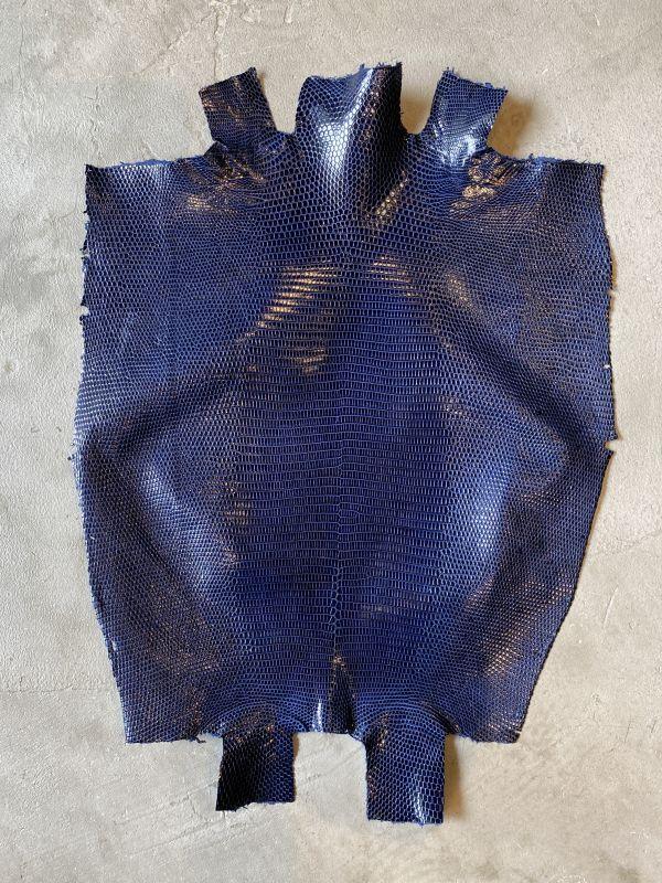 画像1: リザード ダークブルー  29cm (1)