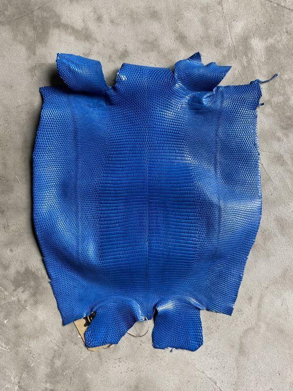 画像1: リザード ブルー  31cm (1)