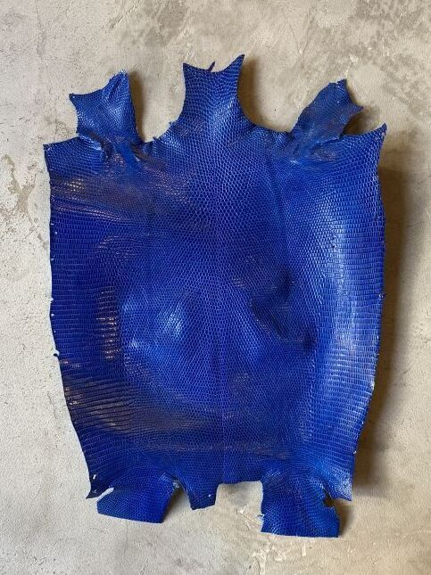 画像1: リザード ブルー  27cm (1)