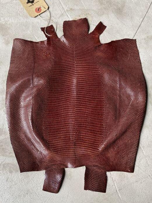 画像1: リザード チョコ  27cm (1)