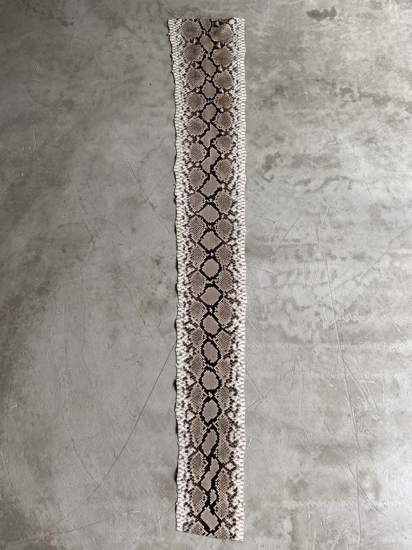 画像1: ダイヤモンドパイソン F/C  ナチュラル 154cm (1)