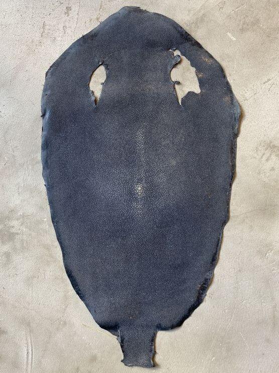 画像1: スティングレイ グレー 10インチ (1)